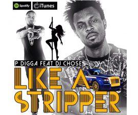 pdigga-stripper-680