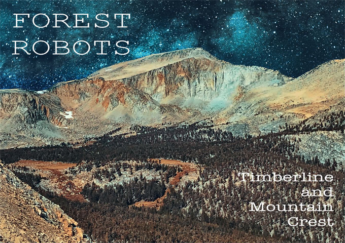 "Forest Robots: ""Timberline and Mountain Crest"" – Inspired by natural landscapes"