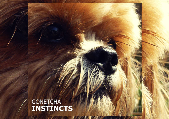 """GONETCHA – """"Instincts"""" – Stylistically carves out its own path"""
