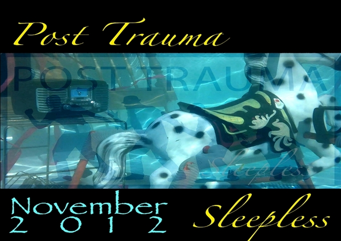 """Post Trauma: """"Sleepless"""" – A Great Mix Of Country Rock"""