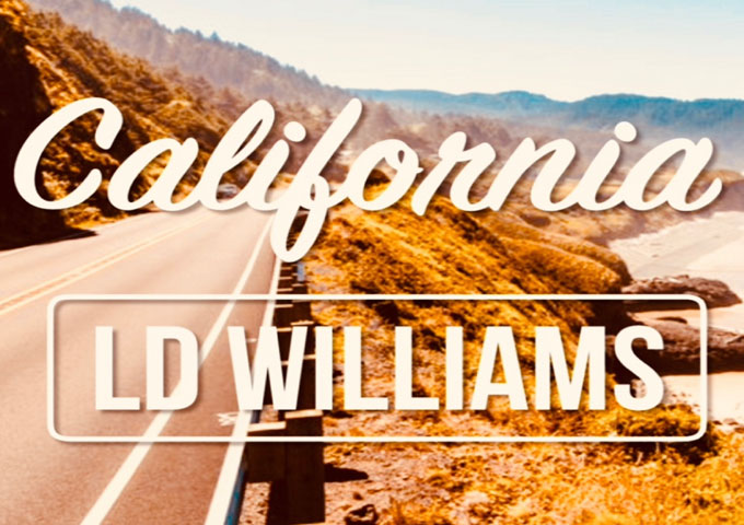 "D Williams – ""California"" – precision-driven songwriting, and a sort of deceptive minimalism!"