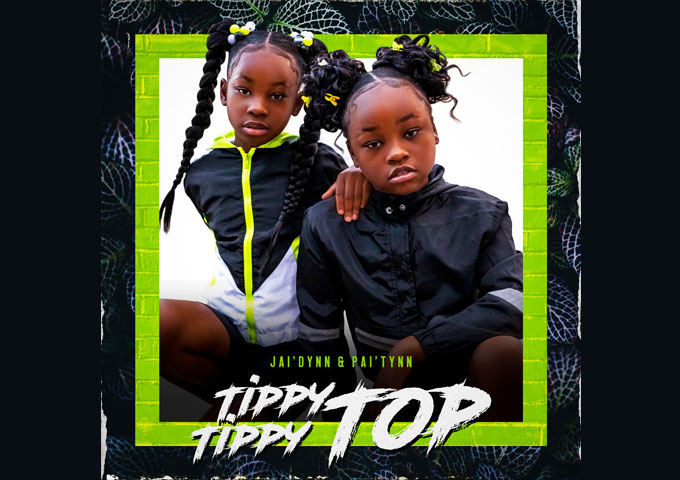 "Jai'dynn & Pai'tynn – ""Tippy Tippy Top"" – Their youthful exuberance draws you right into their world"